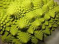 Romanesco Broccoli detail - (3).jpg