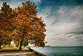 Rorschach Autumn.jpg