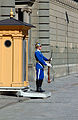 Royal Guard, Stockholm Palace.jpg