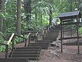 Ruhner Berge Treppe.jpg