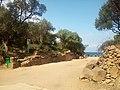 Ruines Romaines Tipaza 10.jpg