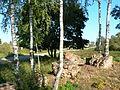 Ruins of Valkininkai Monastery, 02.JPG