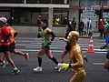 Runner (16598136496).jpg