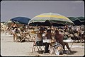 STEWART BEACH, ON THE EASTERN END OF GALVESTON ISLAND, ONE OF THE AREA'S MOST POPULAR SUMMER PLAYGROUNDS - NARA - 550928.jpg