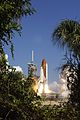 STS-114 Shuttle launch treeview.jpg