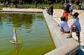Sailboats 2, Jardin du Luxembourg, Paris 18 May 2014.jpg