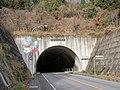 Sakura tunnel (Ibaraki prefectural road route 39,Kasama-Ogawa line).JPG