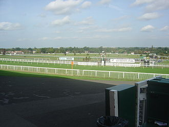 Sandown Park Racecourse - The Winning Line