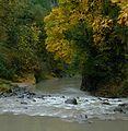 Sandy River (14596146421).jpg