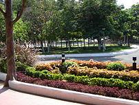 Eco-Friendly campus of Satyam, Hyderabad