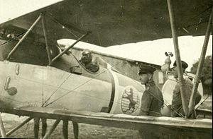 Eduard Ritter von Schleich - Schleich in his Albatros aircraft as leader of Jasta 21