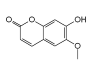 Chemical structure of scopoletin