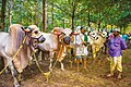 Scuplures of Cattle Market Scene.jpg