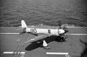 Sea Fury 805 Sqn on HMAS Sydney (R17) c1951.jpg