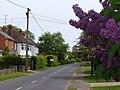 Seale Lane - geograph.org.uk - 1316645.jpg