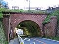 Seiso Electric Railroad No.2 Tunnel-1.jpg