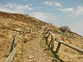 Sentier (6).jpg