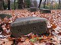 Shady Grove Cemetery Memphis TN 2012-12-09 006.jpg