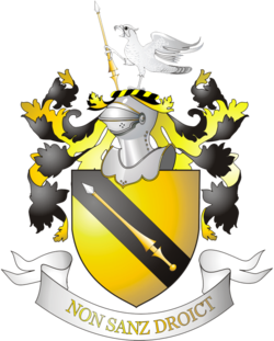 Family arms, granted in 1596
