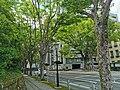 Shizuoka Prefectural Office (6).jpg