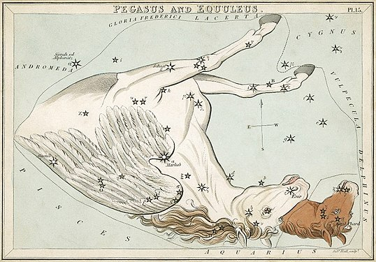 Sidney Hall - Urania's Mirror - Pegasus and Equuleus (best currently available version - 2014).jpg
