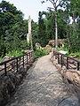 Singapore Botanic Gardens, Evolution Garden 21, Sep 06.JPG