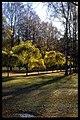 Skogskyrkogården - KMB - 16000300018390.jpg