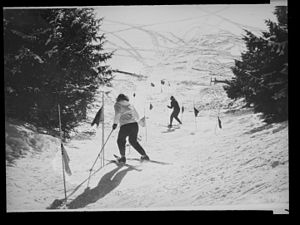 Stem christie - Skiers employing the stem christie through slalom gates.
