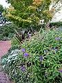 Smithsonian Gardens in October (22124713054).jpg