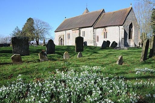 Snowdrops and Pirton church (geograph 3342062)
