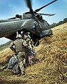 Soldiers Board Merlin Helicopter During Operation Omid Haft in Afghanistan MOD 45152767.jpg