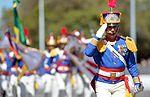 Solenidade cívico-militar em comemoração ao Dia do Exército e imposição da Ordem do Mérito Militar (26540981675).jpg