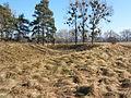 Somogyzsitfa és Csákány közötti földvár.jpeg