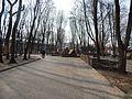 Sovetskiy rayon, Bryansk, Bryanskaya oblast', Russia - panoramio (195).jpg