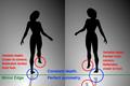 Spinning dancer explained.png