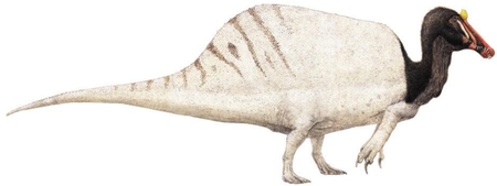 Spinosaurus by Joschua Knüppe.png