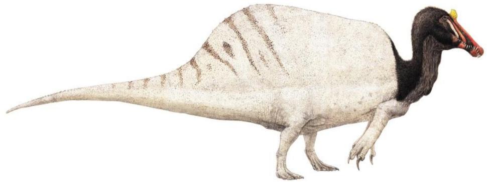 Spinosaurus by Joschua Knüppe
