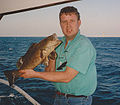 Spotted grouper caught with rod on the read sea in Egypt.jpg