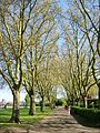 St Chad's Park, Chadwell Heath 1.jpg
