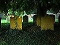 St Mary's churchyard, Masham - geograph.org.uk - 436573.jpg