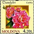 Stamps of Moldova, 026-12.jpg
