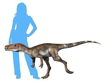 Staurikosaurus new NT.jpg