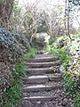 Steps leading up to Kenwyn cemetery from the Allen Valley - geograph.org.uk - 765803.jpg