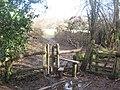 Stile near Little Clayton's Wood - geograph.org.uk - 1735592.jpg