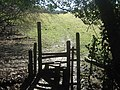 Stile on the edge of Sproud's Wood - geograph.org.uk - 1732299.jpg