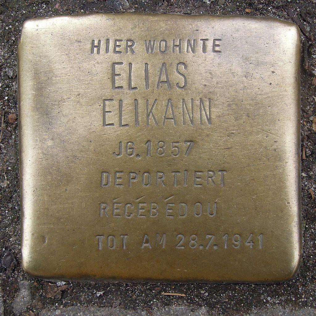 Stolperstein Neustadt an der Weinstraße Fröbelstraße 5 Elias Elikann.jpg