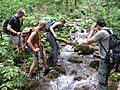 Stream crossing in Perućica forest (3886658435).jpg