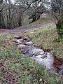 Stream near Daniel's Place, Monnow Valley - geograph.org.uk - 85152.jpg
