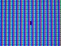 Subpixelfehler, NEC Monitor.jpg