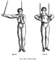 Suspension-training.png